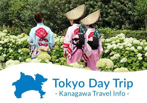 Explore the best of Kanagawa
