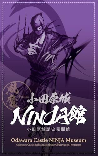 Online Ninja Training Experience